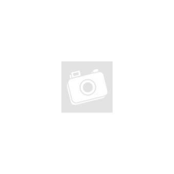 AS-Motor AS 21 4T Comfort mindentnyíró gazvágó